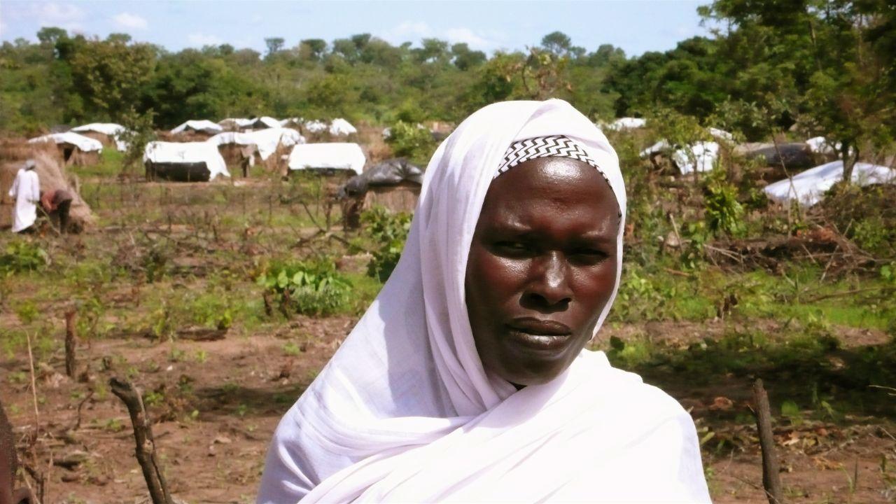 Una donna del darfur