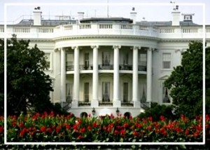 presidenziali americane