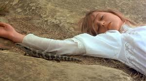 picnic and hanging rock