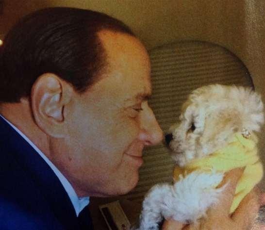 Dudu-Silvio