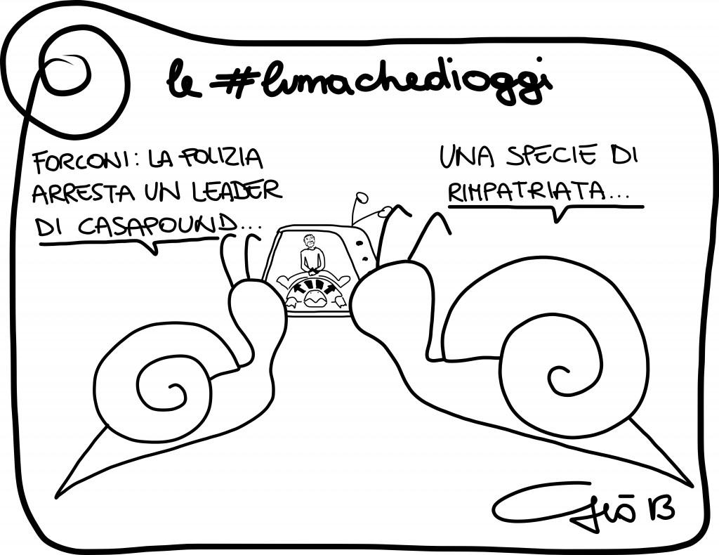 #lumachedioggi di Giovanni Laccetti del 15.12.2013