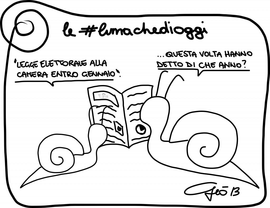 #lumachedioggi di Giovanni Laccetti del 19.12.2013