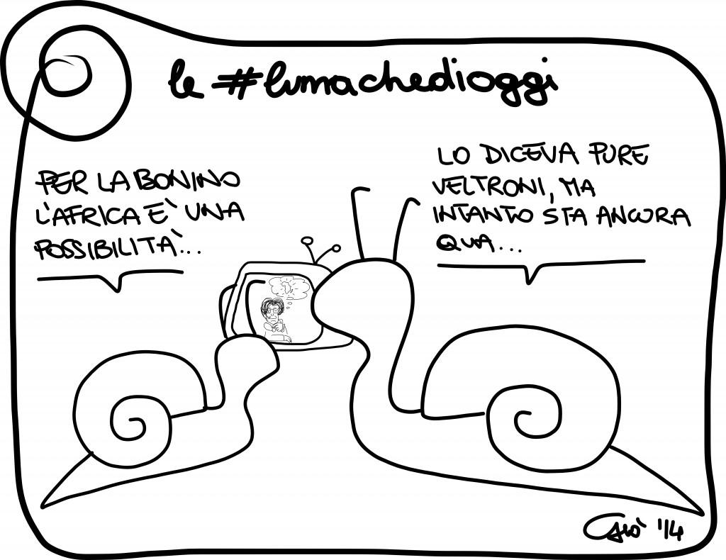 #lumachedioggi di Giovanni Laccetti del 11.01.2014