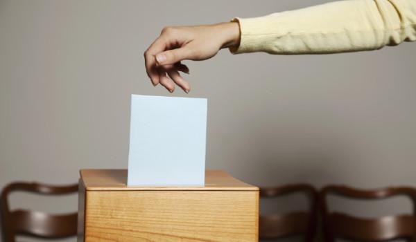 anatomia di un elettore