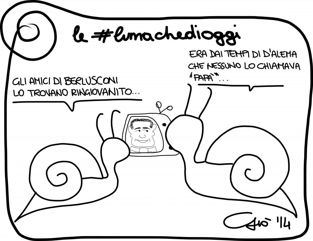 #lumachedioggi di Giovanni Laccetti del 25.1.2014