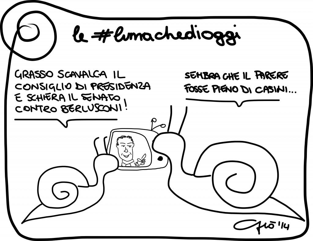 #lumachedioggi di GIovanni Laccetti del 6.2.2014