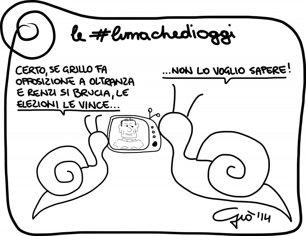 #lumachedioggi di Giovanni Laccetti del 13.2.2014