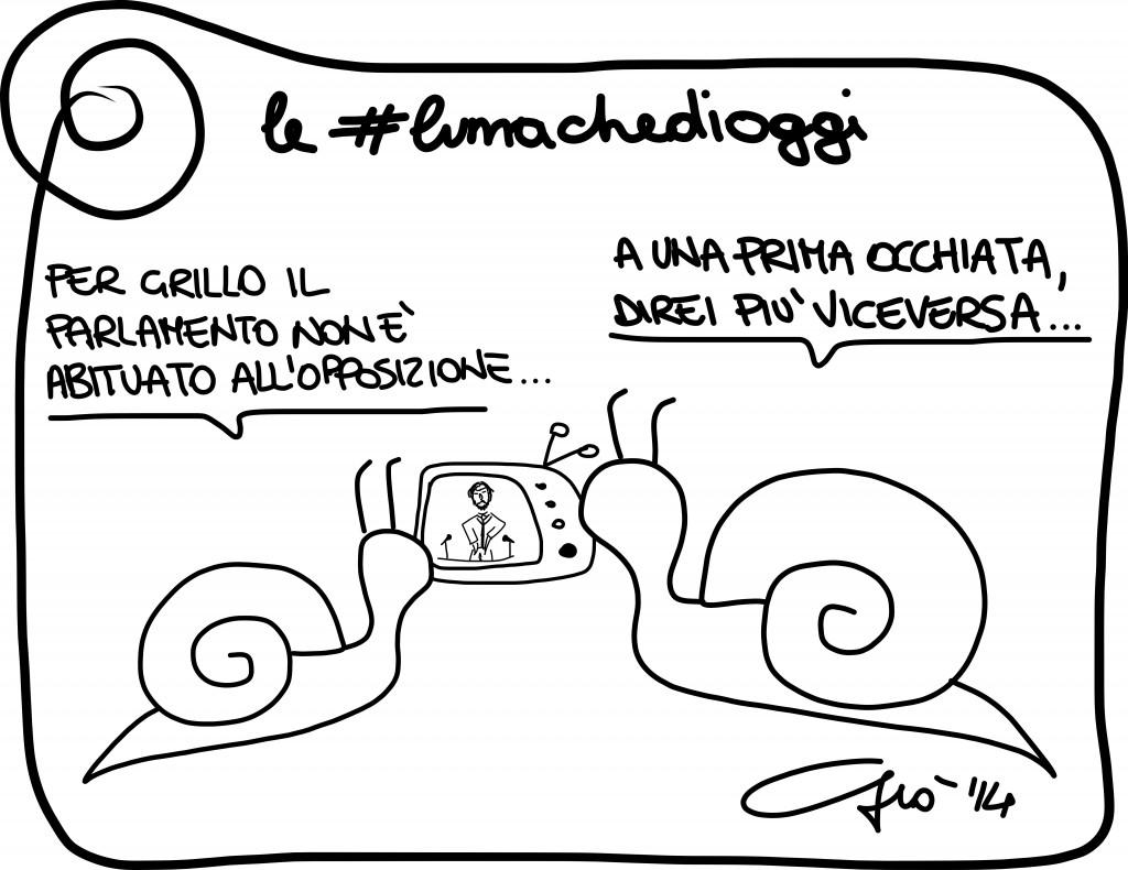 #lumachedioggi di Giovanni Laccetti del 1.2.2014