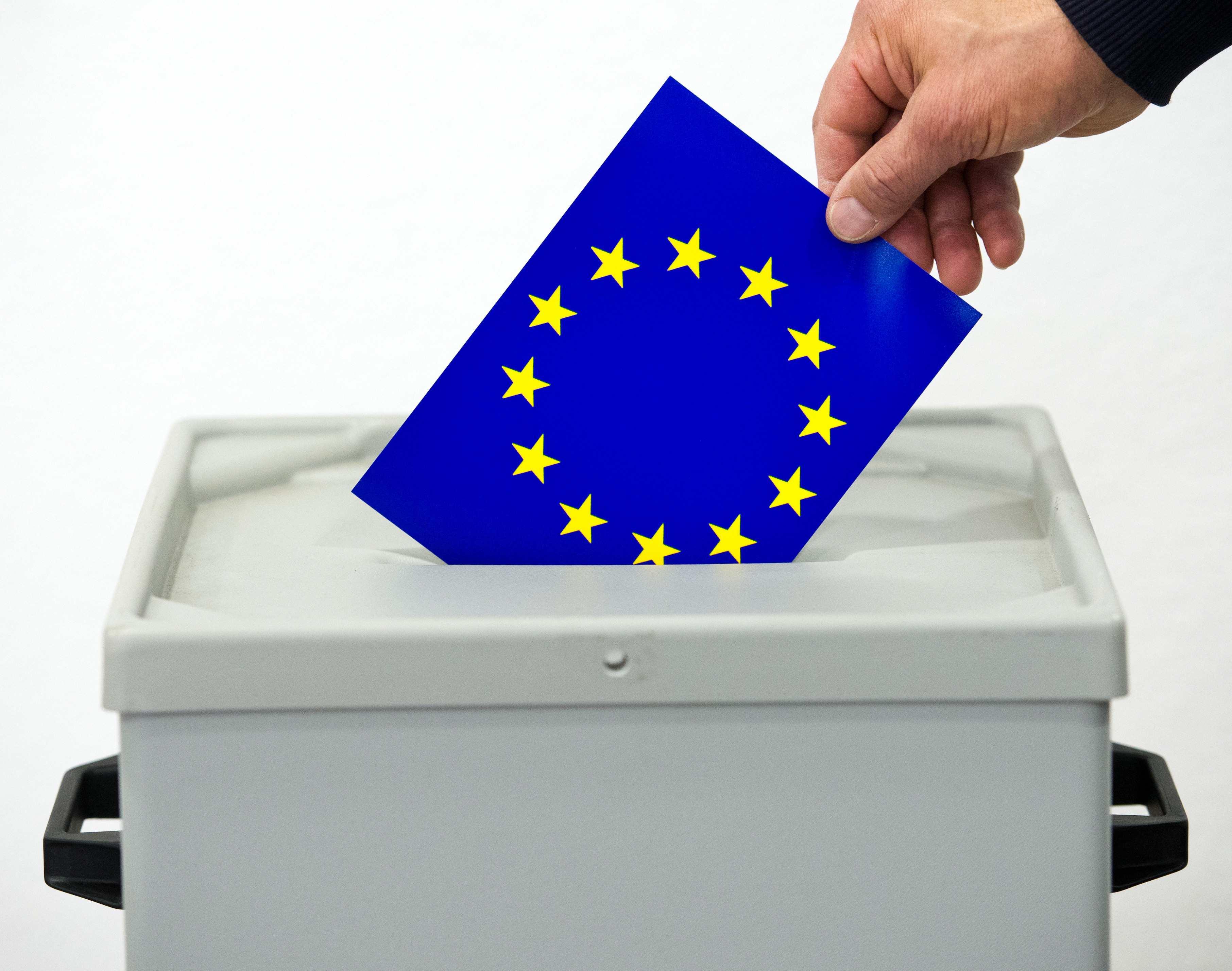 Europee 2014 ecco i programmi dei partiti politici europei for Votazioni parlamento