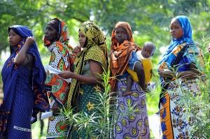 Africa: commercio equo e solidale sotto accusa