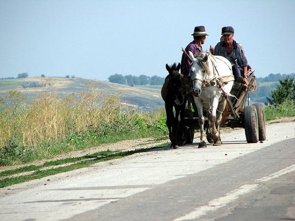 elezioni moldavia