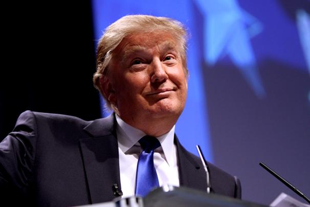 sondaggi politici elezioni usa donald trump