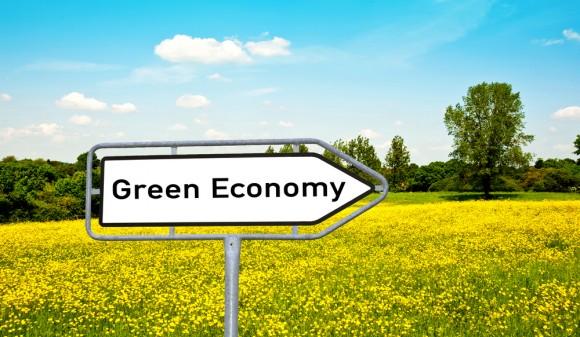 green economy 2 stein