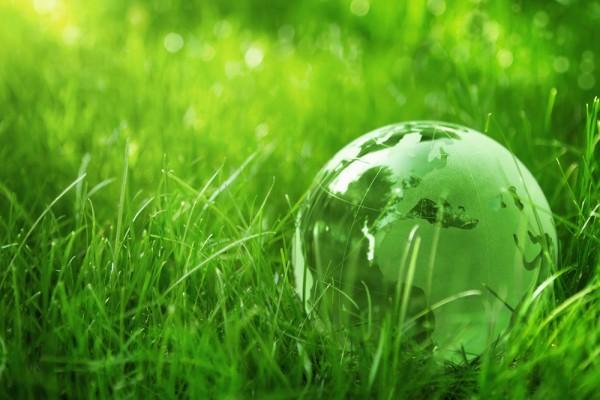 green economy 5