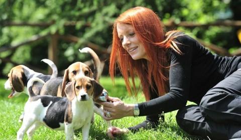 sondaggi elettorali, Silvio Berlusconi, Michela Vittoria Brambilla mentre gioca su un prato con un cane