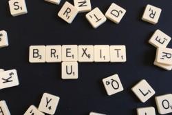 Sondaggi Referendum: ad evitare il Brexit potrebbero essere gli indecisi