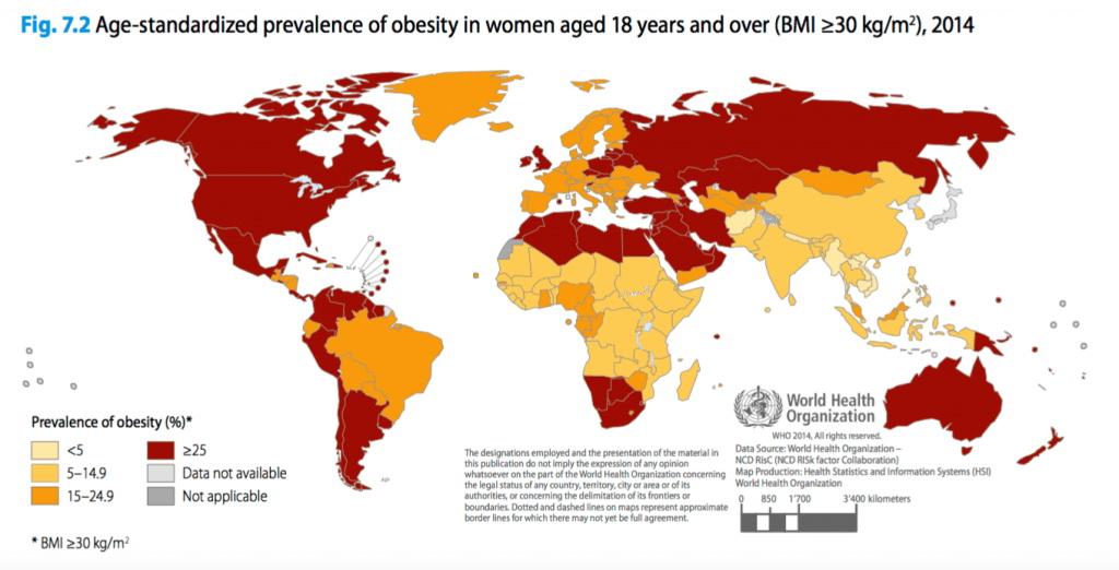Risultati immagini per obesità immigrati