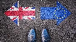 Bregrexit, le falle della petizione online per il secondo referendum