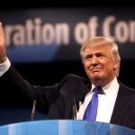 Donald Trump presidenziali usa sondaggi usa elettorali intenzioni di voto