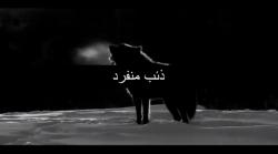 Isis: emulazione di lupi solitari o jihadisti ben addestrati?