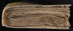Manoscritto di Voynich: presto sar� in vendita