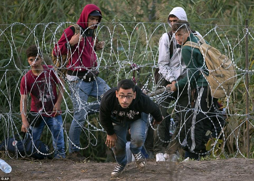 referendum ungheria, immigrazione, rifugiati