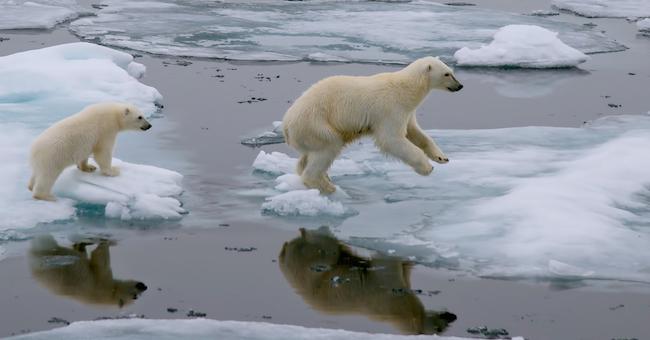 usa economia clima