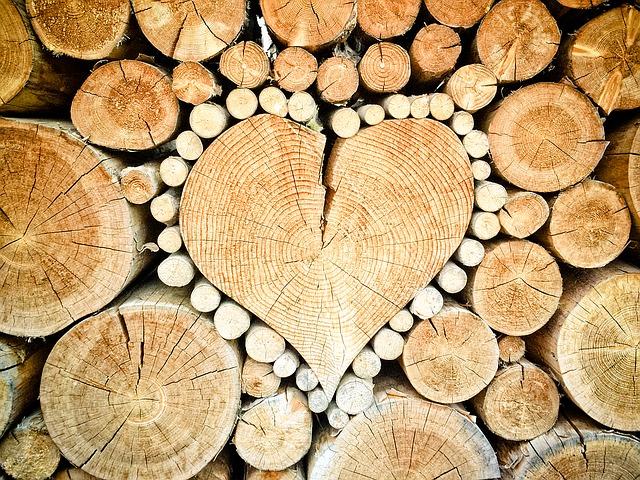 cuore disegnato nella legna, legno e tronchi d'albero accatastati