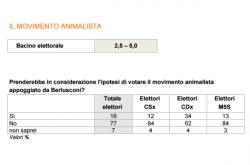 Sondaggi elettorali Ixè: il Movimento Animalista non andrebbe oltre il 5%