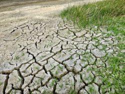 Allarme siccità 2017 in tutta Italia: il punto della situazione