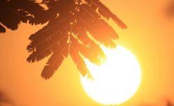 Quando arriva il caldo in Italia    previsioni meteo e temperature
