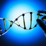 genetica bioetica