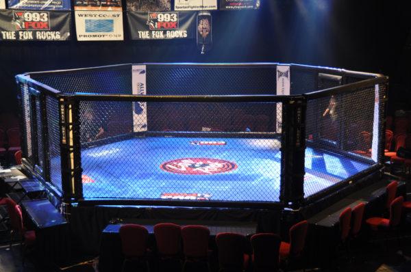 MMA UFC
