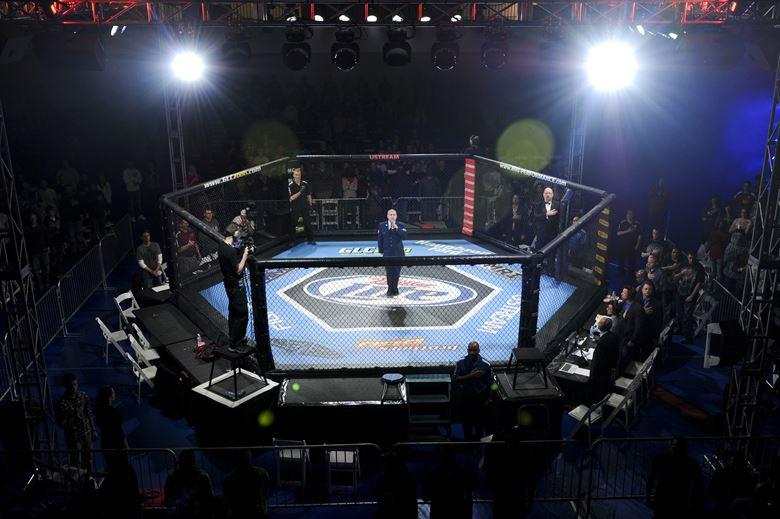 MMA UFC 234
