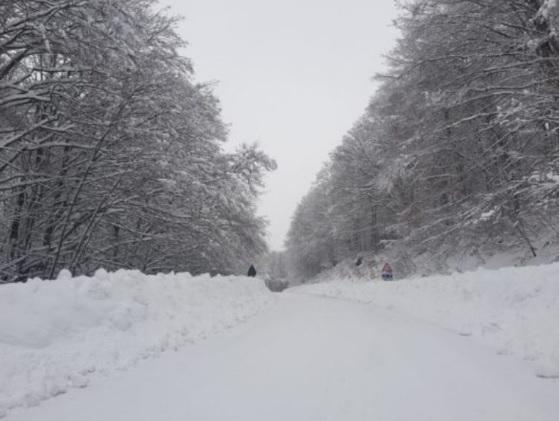 Meteo inverno 2019 in Italia come sarà le previsioni di freddo e neve