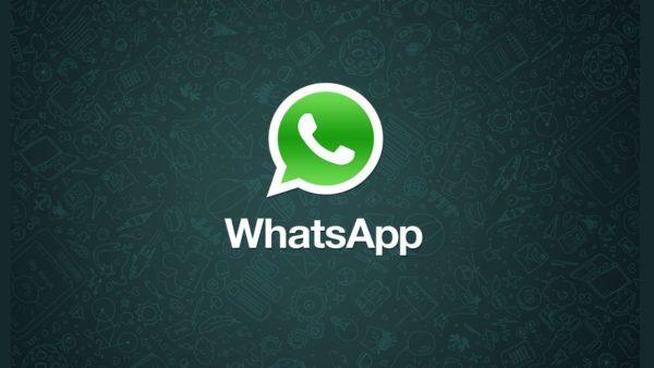 WhatsApp, da oggi arrivano gli adesivi