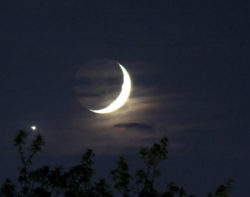 Calendario lunare 2019 |  fasi lunari |  eclissi e info per mese