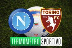 Napoli Torino: diretta streaming, tv e cronaca in tempo real