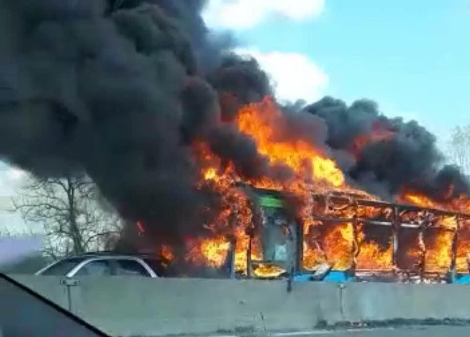 bus fiamme Milano, sondaggi politici