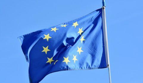 Elezioni europee 2019, analisi alleanze partiti e come sarà il parlamento