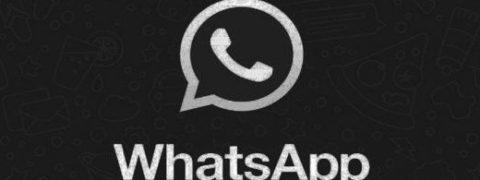 WhatsApp Beta: modalità scura su Android in arrivo, come cambia