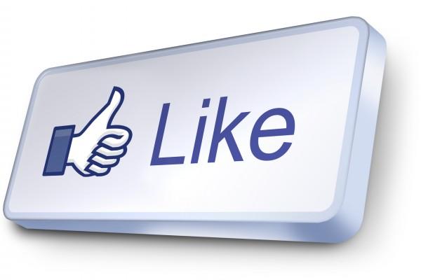 Facebook Sondaggi politici social network