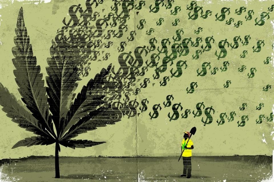 cannabis legale, foglia di marijuana da cui escono dollari
