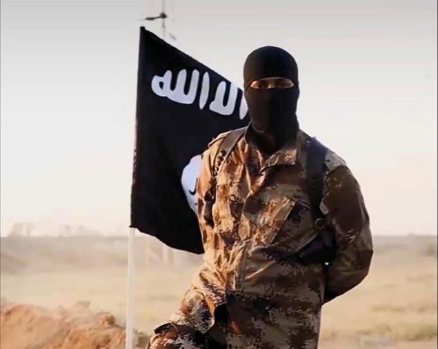 isis foreign fighters germania