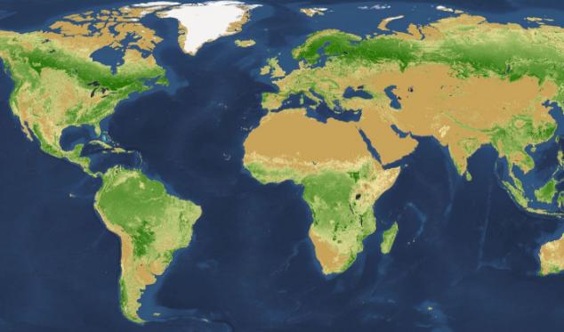 quanti alberi ci sono nel mondo, alberi nel mondo, deforestazione