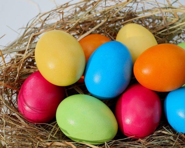 Dolci Pasqua 2019 i migliori da fare e la top 10 delle ricette facili