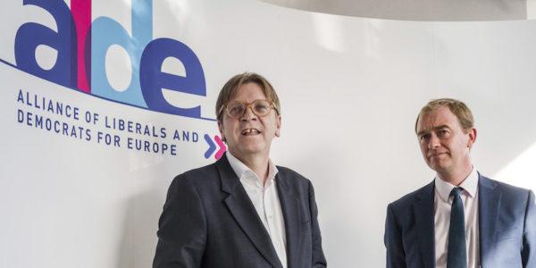 Elezioni Europee, i risultati dei Liberali paese per paese