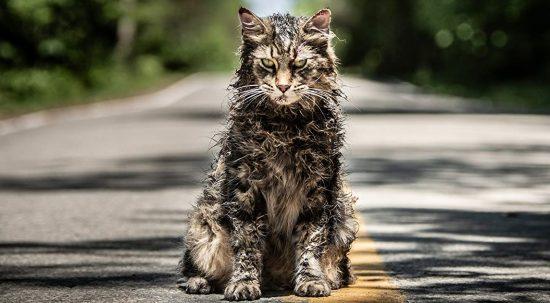 Pet Sematary trama, cast e curiosità del film al cinema