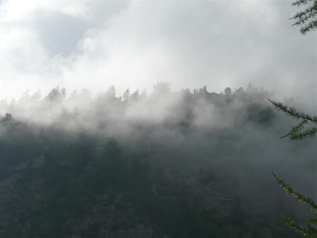 Cielo annuvolato con presenza di nebbianebbia