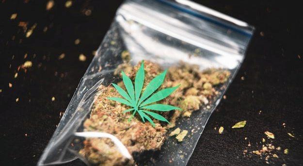 Luca Sacchi - acquisto di marijuana ma